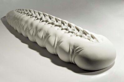 Szymon Oltarzewski, 'Caterpillar', 2014