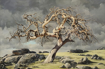 David Warren, 'Tree at Yuroke', 1999