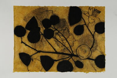 Suzi Davidoff, 'Sendero, Dia 5', 2015