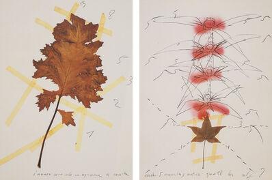 Mario Merz, 'Da un erborio raccolto nel 1979 in Woga-Woga, Australia  (From a herb collected in 1979 in Woga-Woga, Australia)', 1979-1989