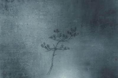 Zhu Jianzhong, 'Ink painting 4', 2014