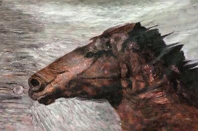 Irena Orlov, 'Brown White Gorgeous Horse', 2017