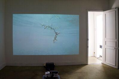 Nicolas Derné, 'Overflow', 2018