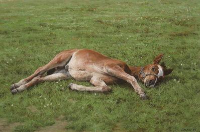 Jay Kirkman, 'A Foal Resting', 1989