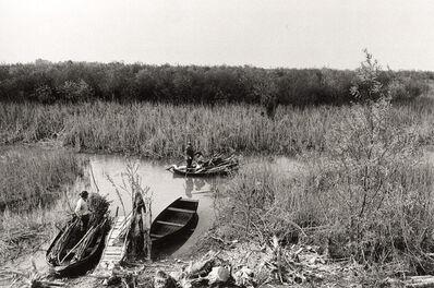 Gianni Berengo Gardin, 'Reed Cutters in an Italian Landscape', 1970s/1970s