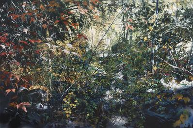 David T. Kessler, 'Intricate Shimmer', 2010