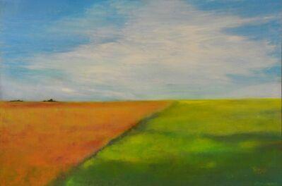John Hayes, 'Salt Creek'