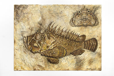Jeffrey Vallance, 'Stonefish (Scorpaena scrofa), 2016', 2016