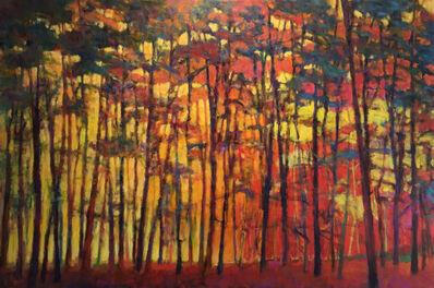 Ken Elliott, 'Brightly Lit Woods', 2015