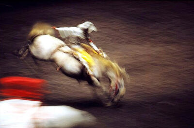 Ernst Haas, 'Rodeo, Madison Square Garden, New York', 1957