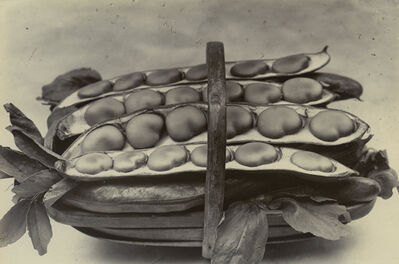 Charles Jones, 'Beans in a Basket, c. 1900', c. 1900