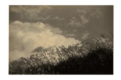 Yamamoto Masao, 'Kawa = Flow #1500'