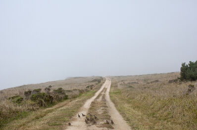 Jason Frank Rothenberg, 'Point Reyes, Edition of 8', 2014