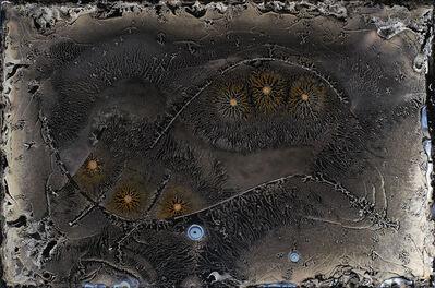 Michael Koerner, 'Wicca Signs, Spider #0108', 2015