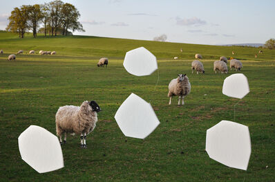 Antoni + Alison, 'Sheep No 2', 2017