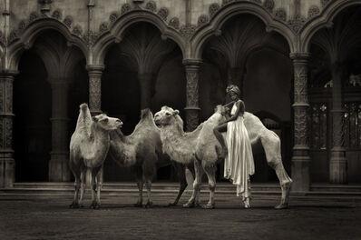 Marc Lagrange, 'The Straw That Breaks The Camel's Back', 2014