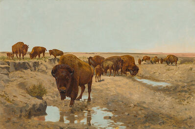 John Dare Howland, 'Buffalo', 1901