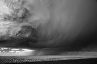 Mitch Dobrowner, 'Rain and Corn, Dumas Texas', 2009