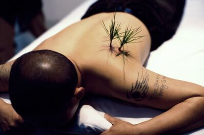 Yang Zhichao, 'Planting Grass', 2000