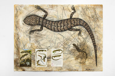 Jeffrey Vallance, 'I Love Reptiles (Elgaria multicarinata multicarinata)', 2016