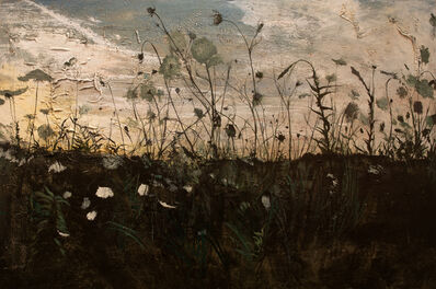 Miles Cleveland Goodwin, 'Queen Anne's Lace', 2019