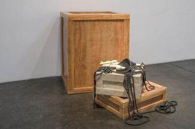 Jeanne Silverthorne, 'Crate VIII', 2012