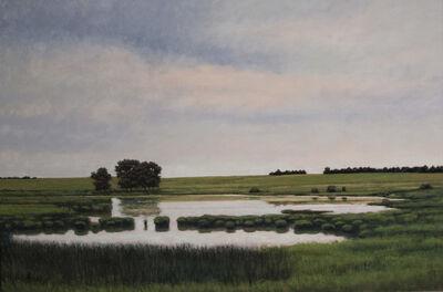 Jeff Aeling, 'Pond Near St. Cloud, MN', 2016
