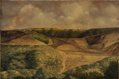 Darlene Campbell, 'Land Reform', 2009