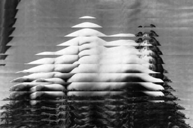 Edouard Taufenbach, 'Vénus à la fourrure', 2019