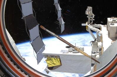 Nicole Stott, 'Paintbrush -ISS Expedition 20', 2009