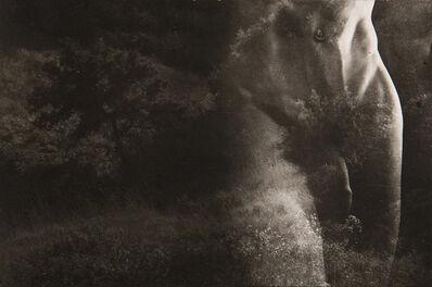 Edmund Teske, 'Composite', 1942