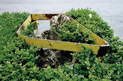 Gabriel Orozco, 'Tree Guard', 2010