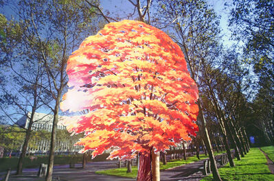 Robert Funk, 'A Tree Grows in Brooklyn Heights', 1976