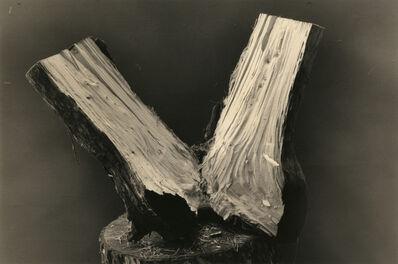 Yamamoto Masao, '1595 from Kawa=Flow'