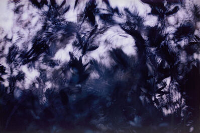 Anri Sala, 'Untitled', 2005