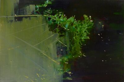 Greet Van Autgaerden, 'Vegetatieve ruimte #5', 2017