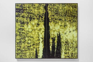 Michal Rovner, 'Yaar (Laila)', 2014