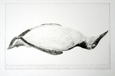 Charles Donker, 'Zeekoet (Guillemot)', 1981