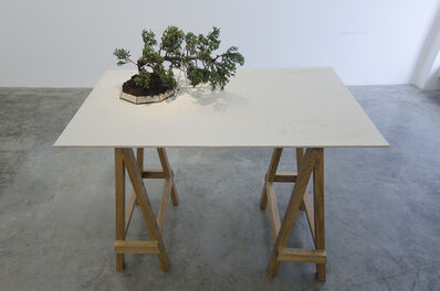 Edwin Monsalve, 'Bonsai', 2014