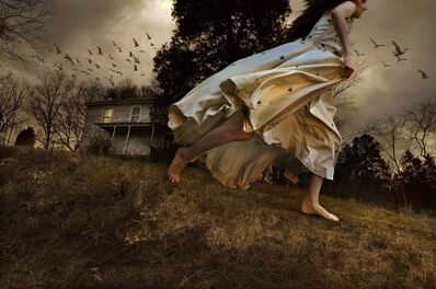 Tom Chambers, 'Winged Migration', 2009