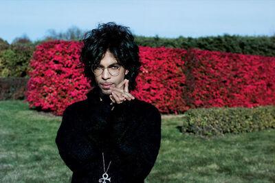 Steve Parke, 'Prince Red Flowers', 1999