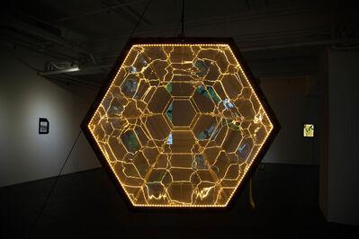 Andrew Luk 陸浩明, 'Honeycomb Accelerator', 2021