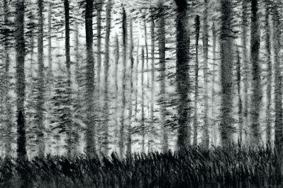 XiaoHai Zhao 赵小海, 'The Woods No.2', 2010