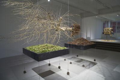 Siobhan Hapaska, 'Downfall', 2009