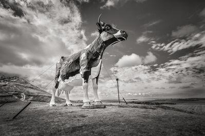 John Custodio, 'World's Largest Holstein Cow, New Salem, North Dakota'