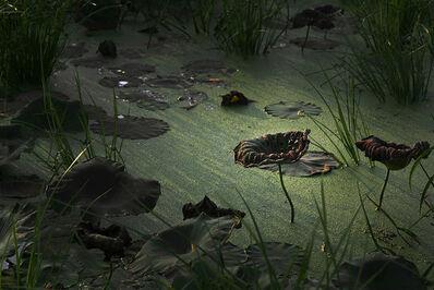 Tomohiro Muda 六田 知弘, 'Mizu 17 (Water 17)', 2007