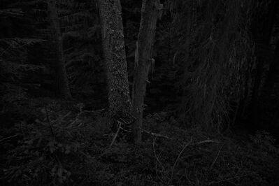Ken Rosenthal, 'Drift', 2014