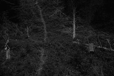 Ken Rosenthal, 'Demarcation', 2011