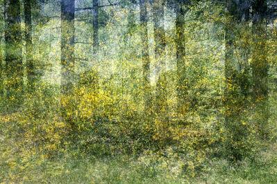 Kim Boske, 'Untitled (Bikbergen)', 2015