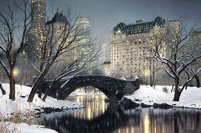 Rod Chase, 'Twilight in Central Park', 2017